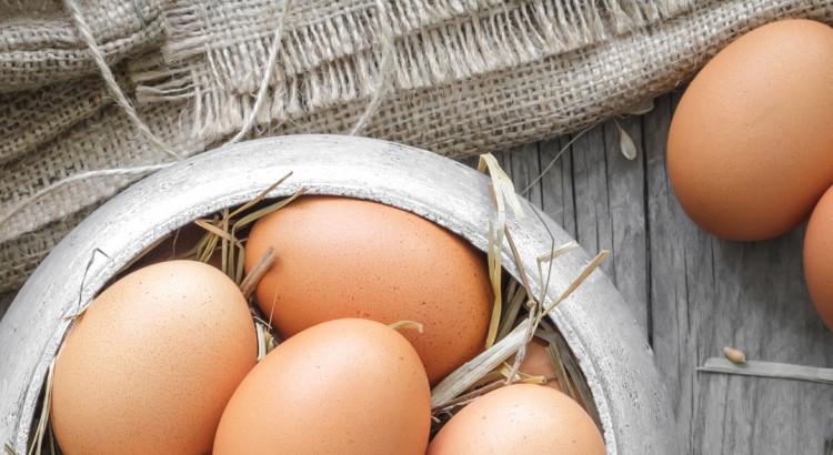 skorupki jaj na osteoporozę